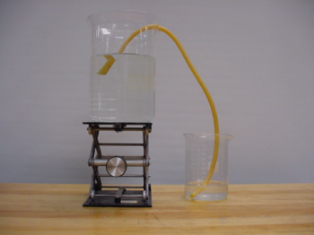A hose siphons water from an elevated beaker to a beaker at a lower position