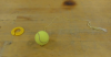 Tennis Ball on a String